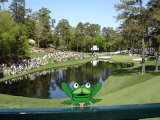 What Famous Hole at Augusta National is the Frankly Frog Visiting?